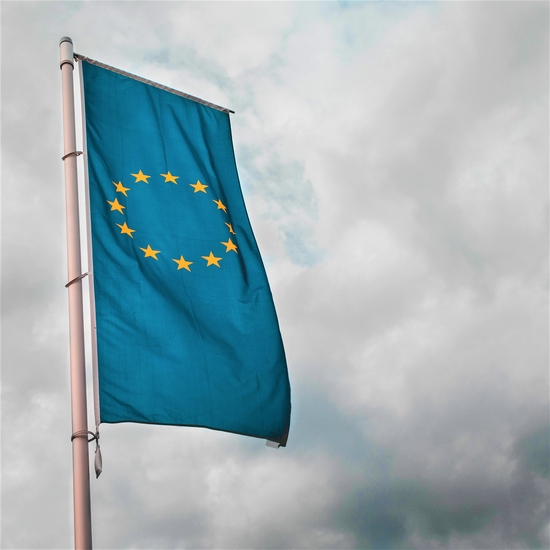 Civil Society Brexit Flag